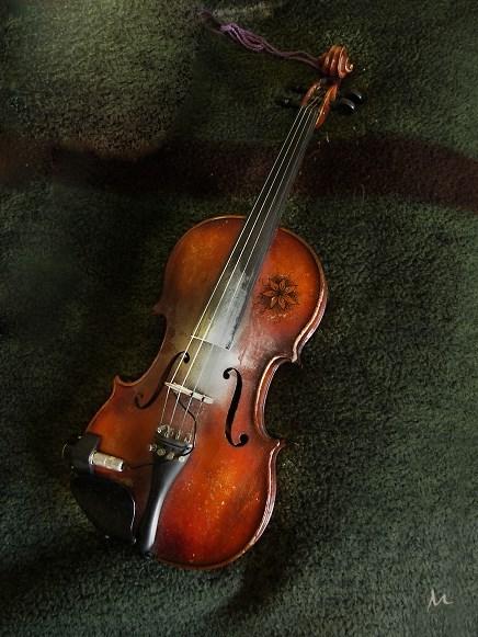 M Violin